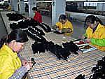 蘿蒔文教用品有限公司 DeYoung Limited © 有限会社田中印刷所