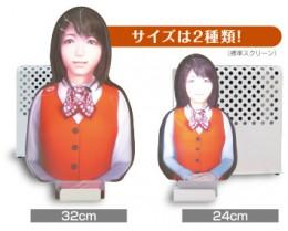 Cubicscreenminiは24cmと32cmタイプがあります